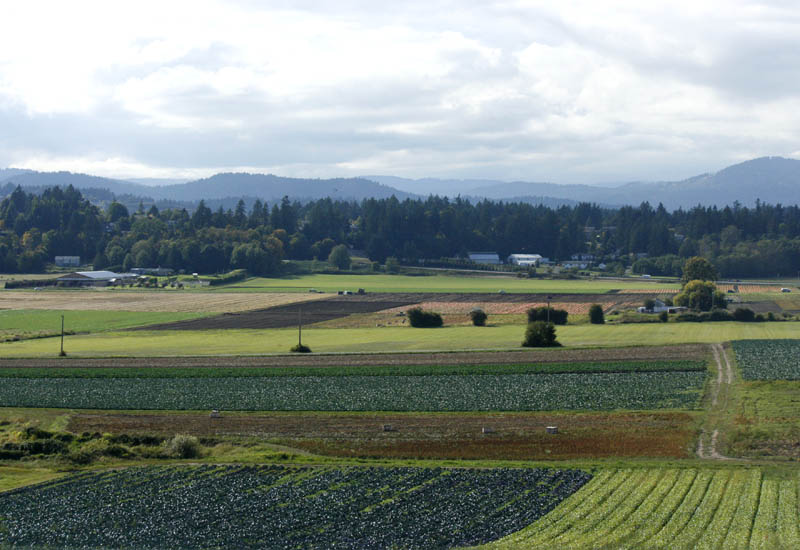 Fields of the Mitchell Farm, Saanich, BC. Photo  © Andrée Fredette