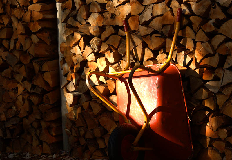 Wood Pile and Wheelbarrow