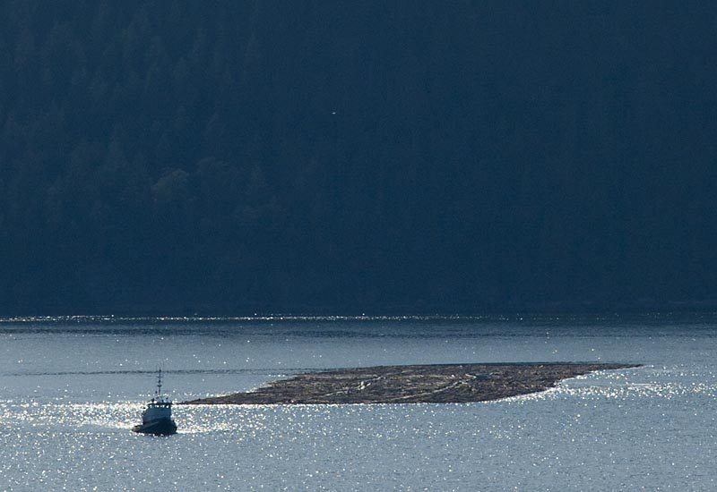 Tug and Log Boom, Plumper Sound, BC