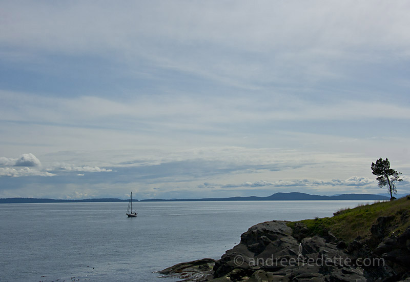 View from the cliffside of East Point, Saturna Island, BC, Canada