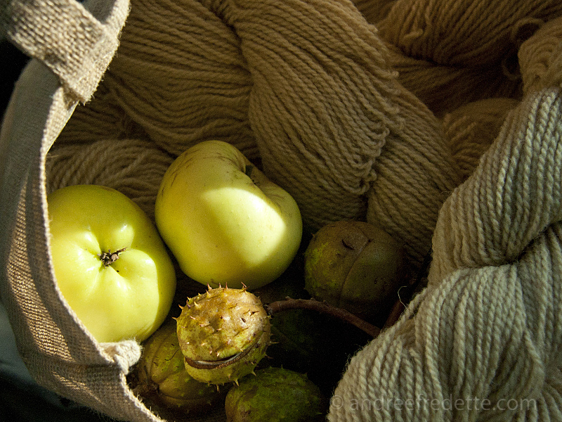 Campbell Farm Woo, Saturna Island - andl Heritage Apples!