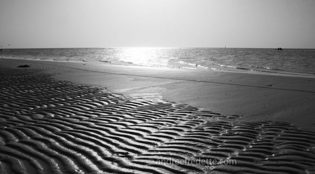 Ripples in the sand. Photo © Andrée Fredette