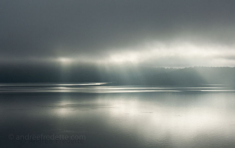 January Light, Saturna Island. Photo © Andrée Fredette