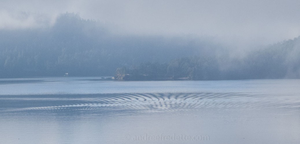 Unexplained ripples in the water. Photo © Andrée Fredette