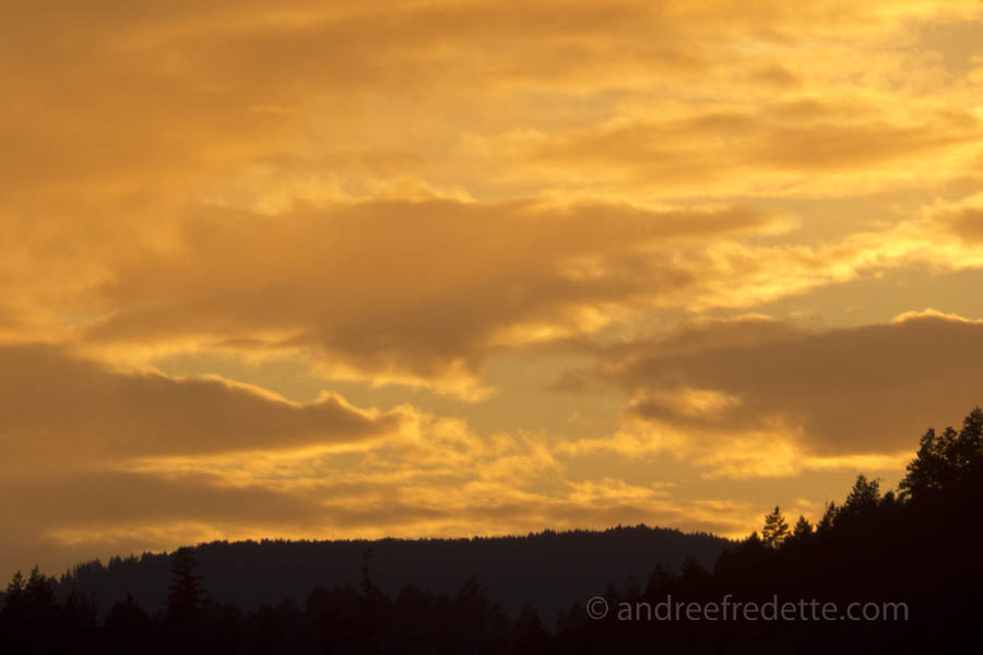 Golden Winter Sunset, February 27, 2015. Photo  © Andrée Fredette
