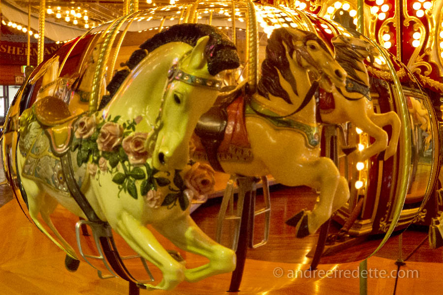 Carousel at the Seattle Waterfront. Photo © Andrée Fredette