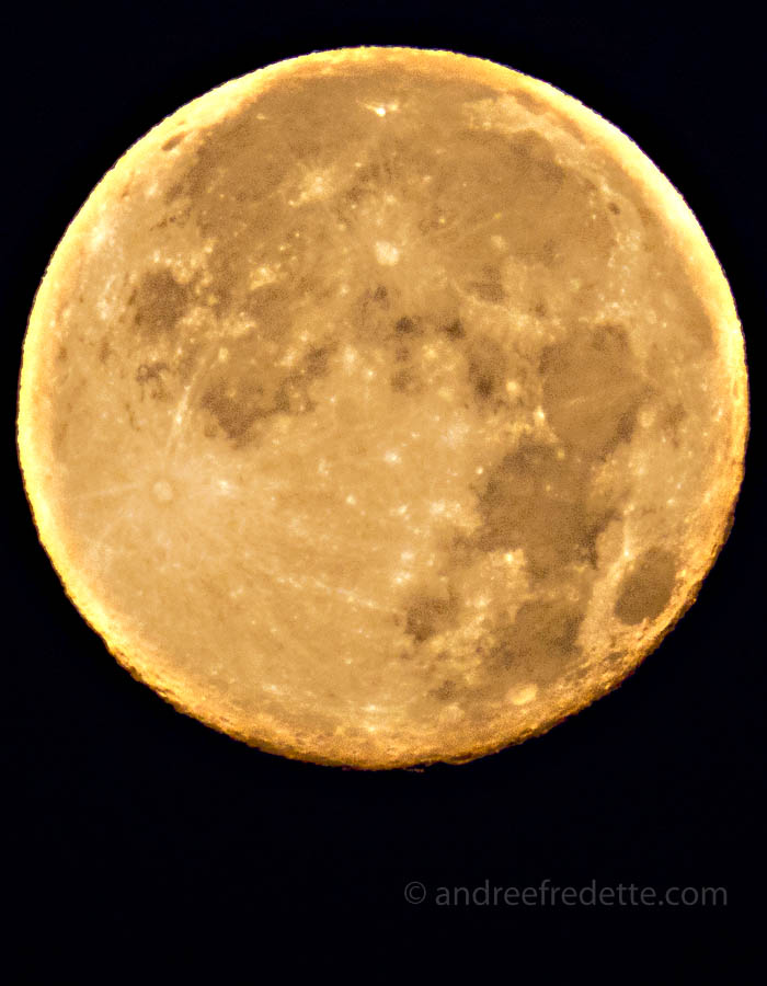 Full Moon. Photo taken with a Canon SX50 by Andrée Fredette