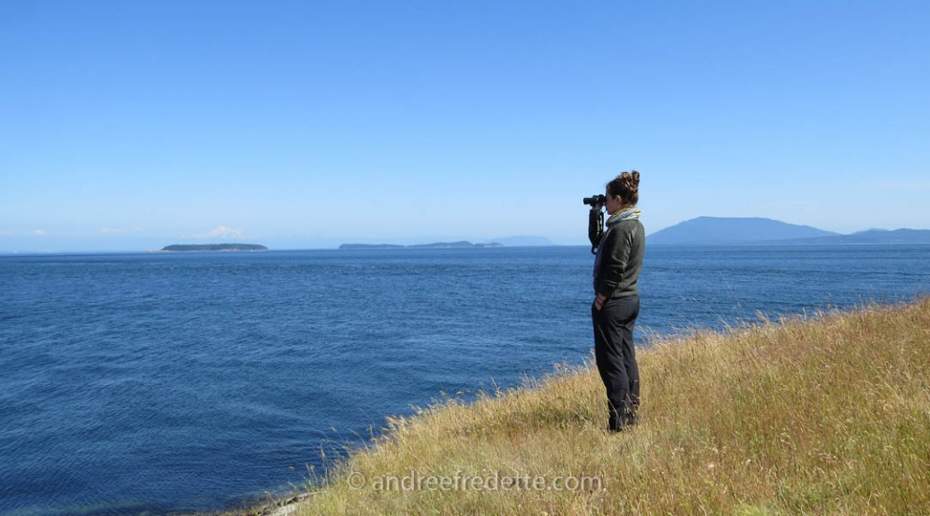 Whale watching from Saturna Island, BC. Photo © Andrée Fredette
