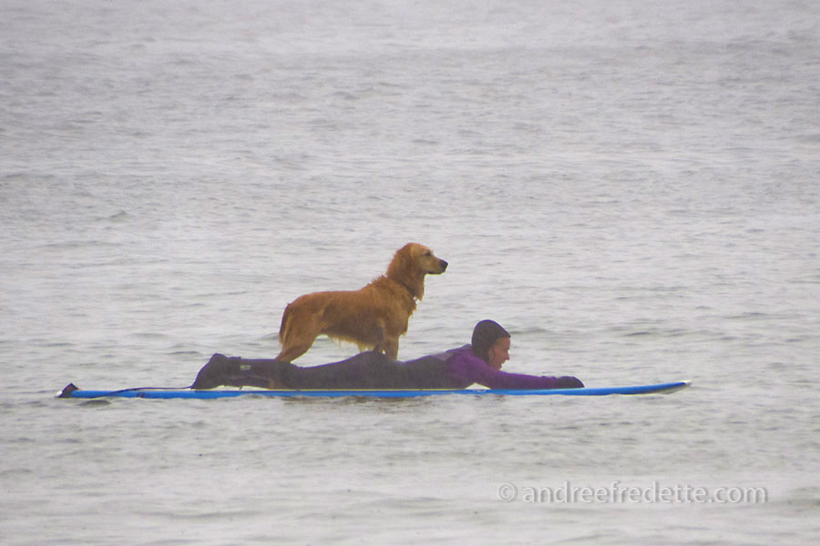 Surfing Duo, Wickaninnish Beach, Pacific Rim National Park, Vancouver Island, BC. Photo by Andrée Fredette
