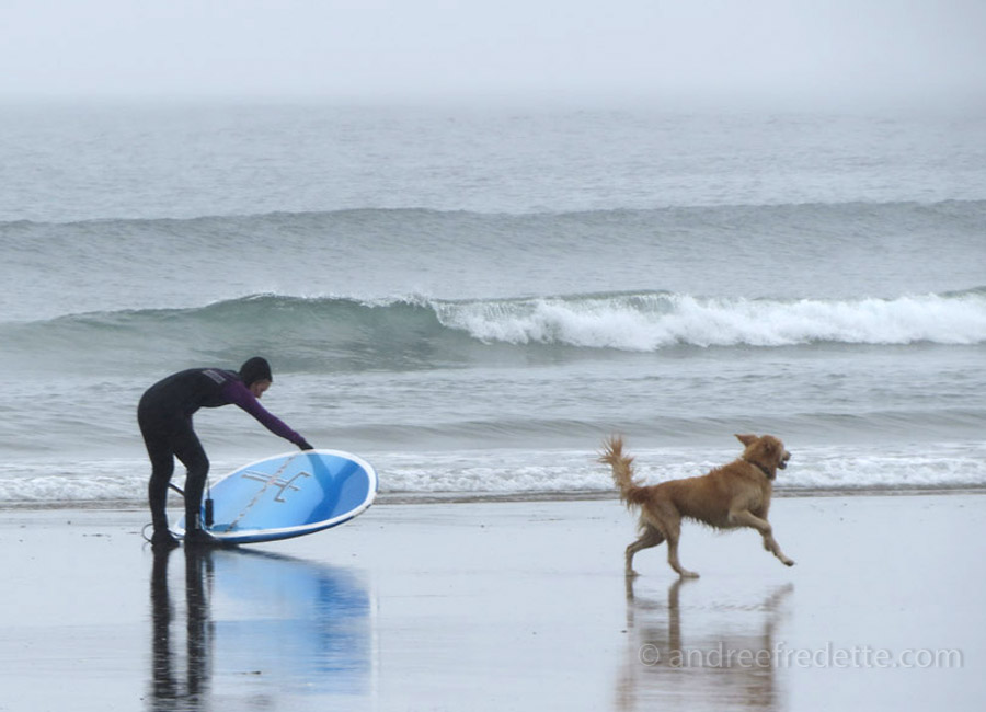 Surfers at Wickaninnish Beach, Parcific Rim National Park, Vancouver Island, BC. Photo by Andrée Fredette