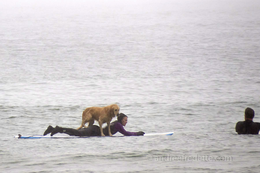 Surfing Trio, Wickaninnish Beach. Pacific Rim National Park, Vancouver Island, BC. Photo by Andrée Fredette