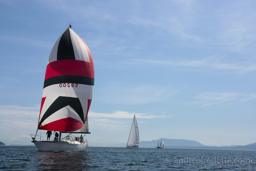 Competitors, sailing regatta. Photo by Andrée Fredette