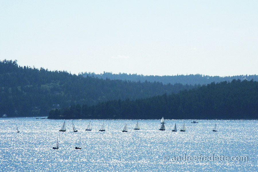 Sailing together in the silver light, between Pender and Saturna Island. Photo by Andrée Fredette