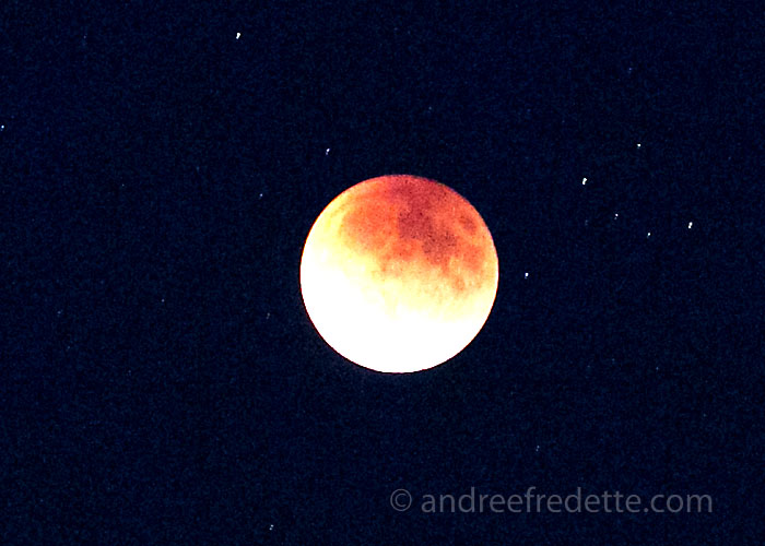 Red Moon at 8:15 pm, local time, Saturna Island, BC. Photo by Andrée Fredette
