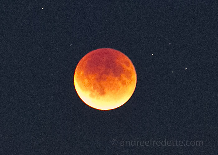 Red Moon at 8:04 pm local time, Saturna Island, BC. Photo by Andrée Fredette
