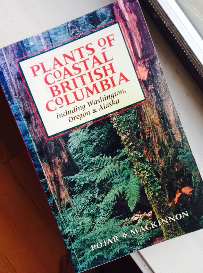 Plants of Coastal British Columbia, by Pojar & MacKinnon.