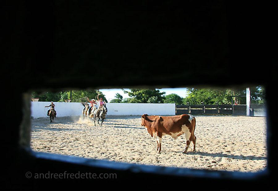 The kids' cowboy practice, Hacienda Kancabchen, Yucatan, Mexico. Photo by Andrée Fredette