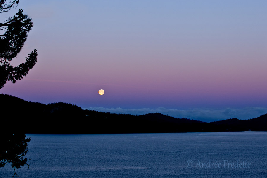 February 23, 2016 moonset over Pender Island, BC. Photo by Andrée Fredette