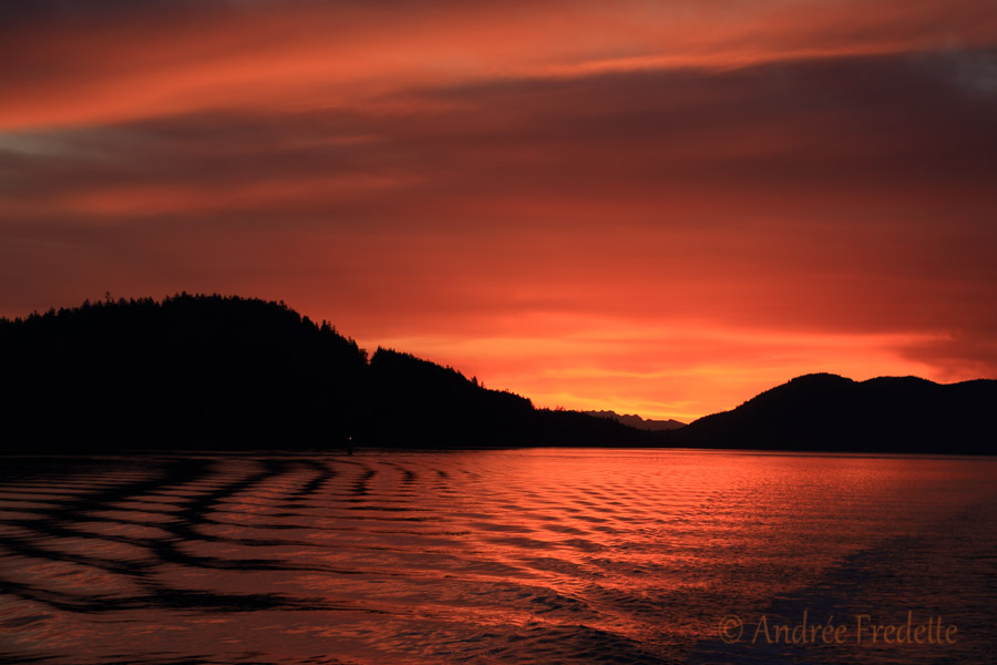Insane sunrise oranges on Navy Channel, in the Southern Gulf Islands of BC. Photo by Andrée Fredette