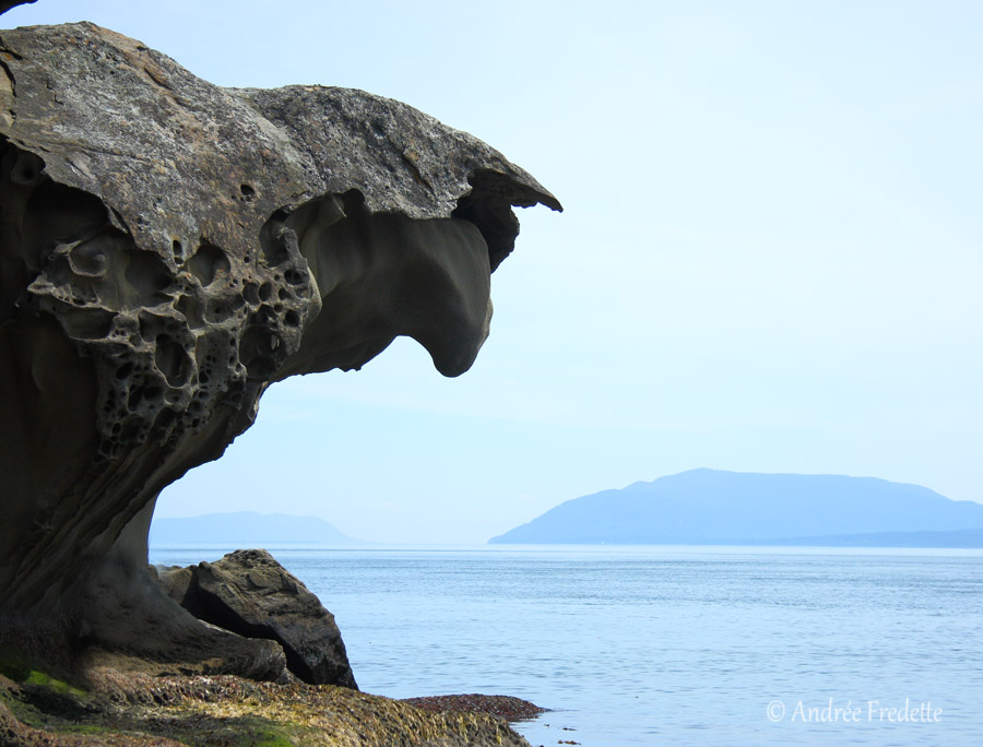 Big nose rock, Fiddler's Cove, Saturna, BC. Photo by Andrée Fredette
