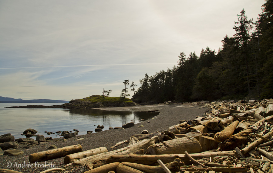 Fiddler's Cove, Saturna Island, BC. Photo by Andrée Fredette