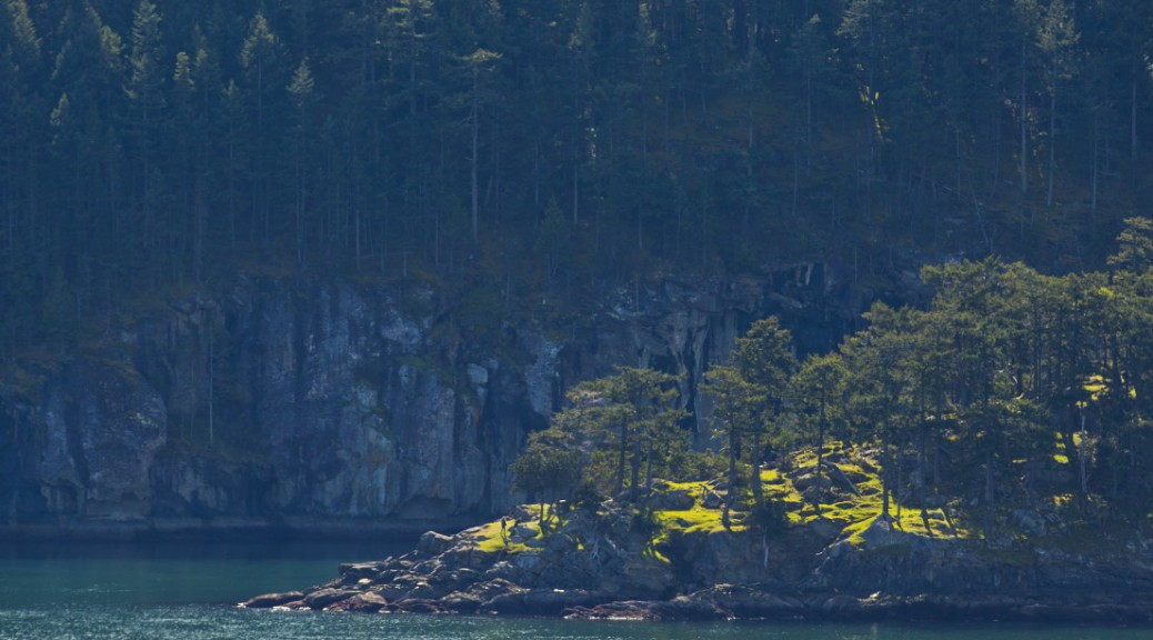 The point of Narvaez Bay, viewed from Fiddler's Cove, Saturna Island. Photo by Andrée Fredette