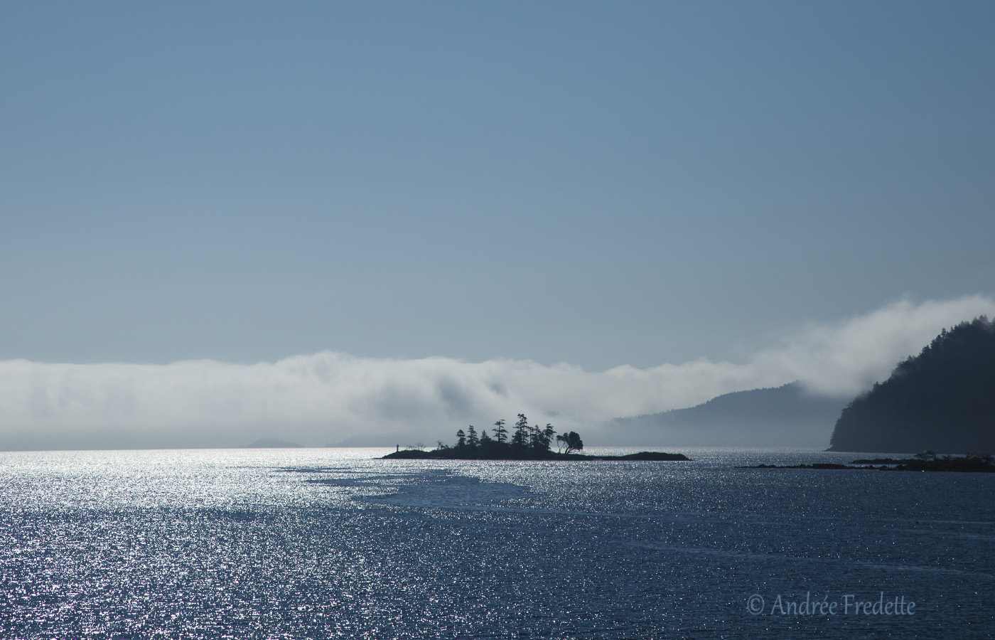 Islet with approaching fog. Photo by Andrée Fredette