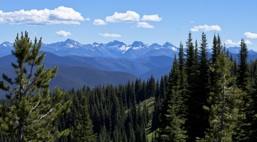 Skyline from the Heather Trail, E.C. Manning Provincial Park. Photo by Andrée Fredette