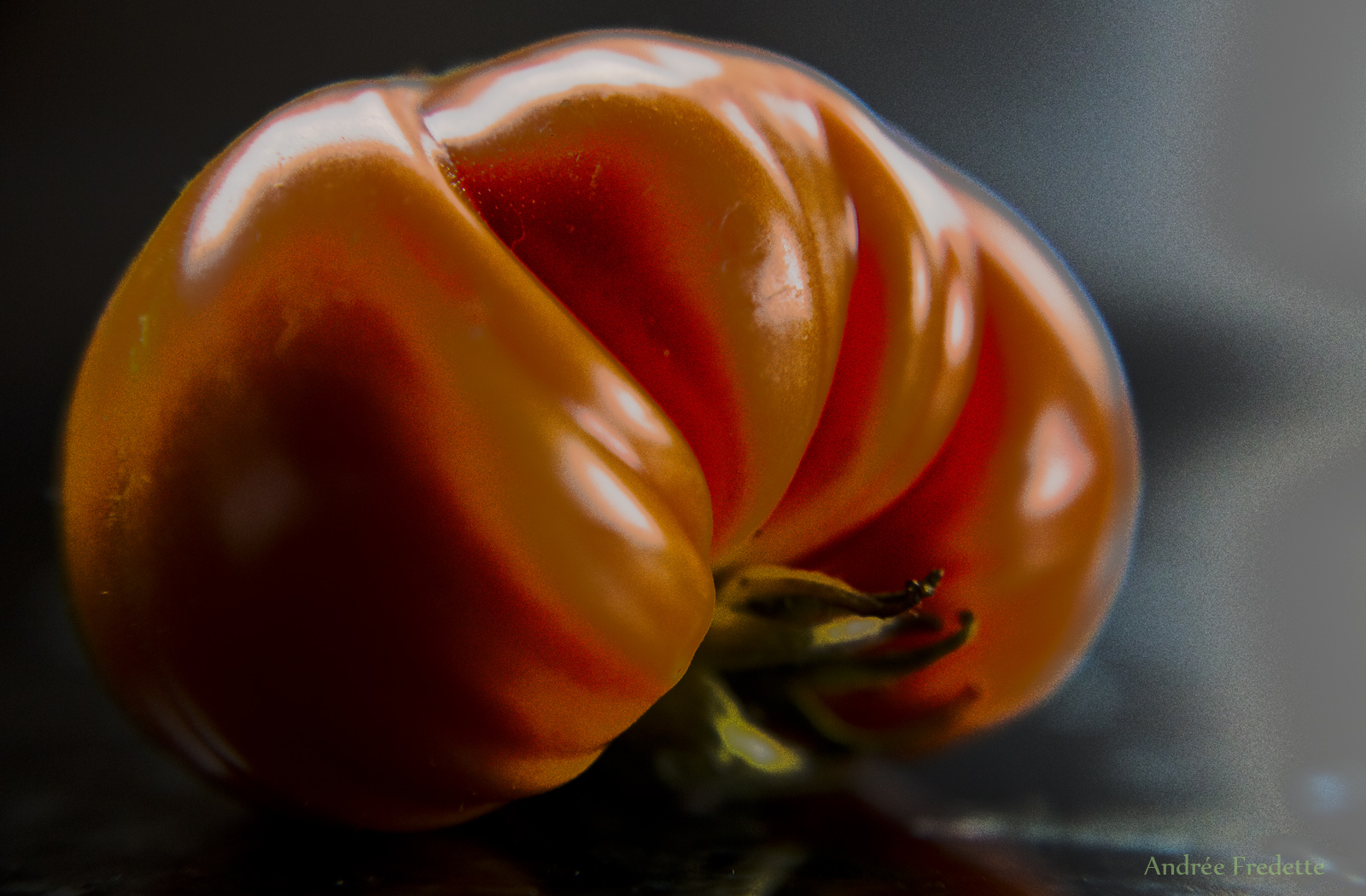 Kiss Summer Goodbye. One of the last Brandywine tomatoes from my garden. Photo by Andrée Fredette