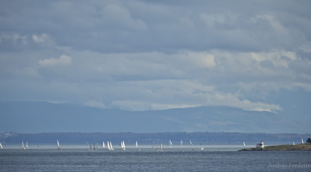 Round The County Orcas Sailing Race, at Patos Lighthouse. Photo by Andrée Fredette