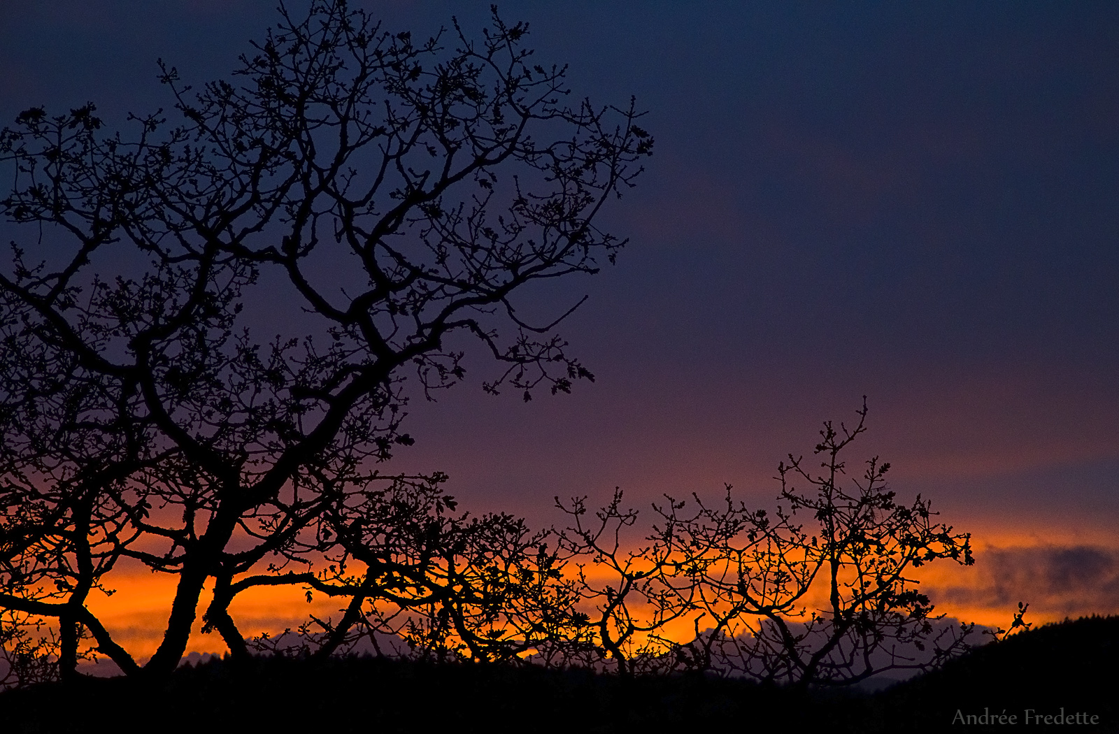 Silhouette sunset. Photo by Andrée Fredette