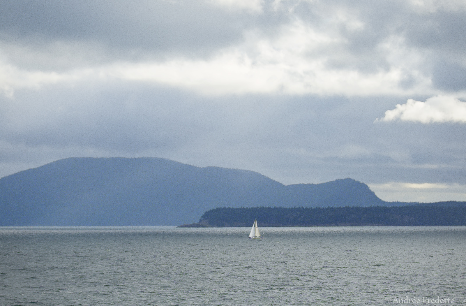 The straggler, in the Orcas sailing race. Photo by Andrée Fredette
