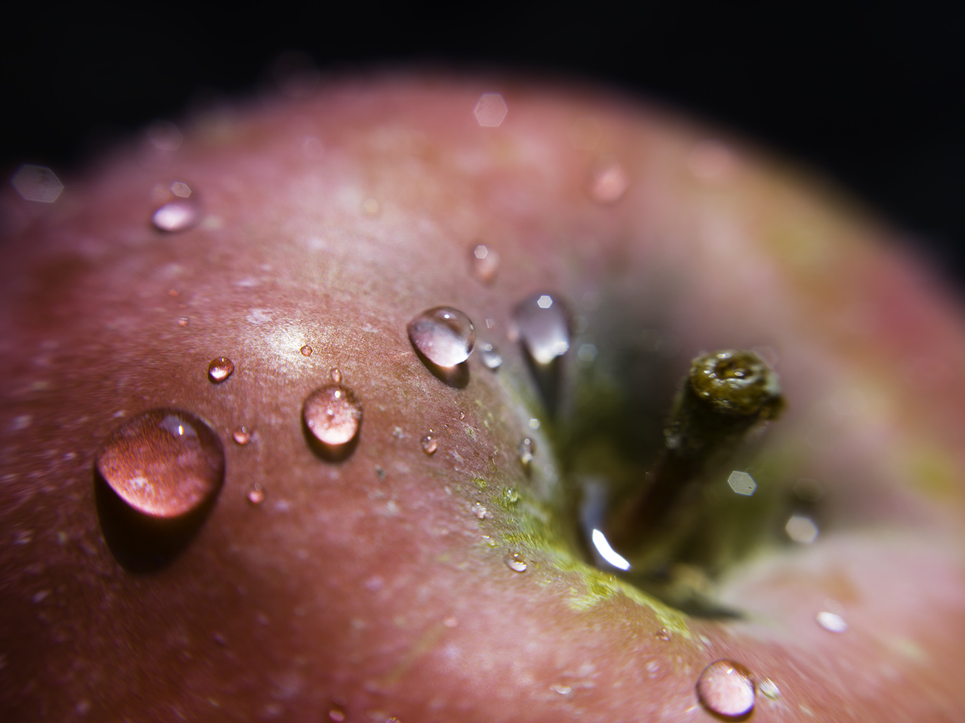 Apple, after rinsing. Macro photo by Andrée Fredette